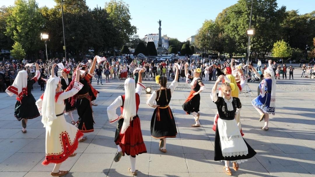 """Фестивалът """"Северина"""" 2020 се отменя"""