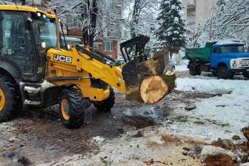 """Над 50 нерегламентирани сметища са почистили служителите на ОП """"Паркстрой - Русе"""" през изминалата година"""