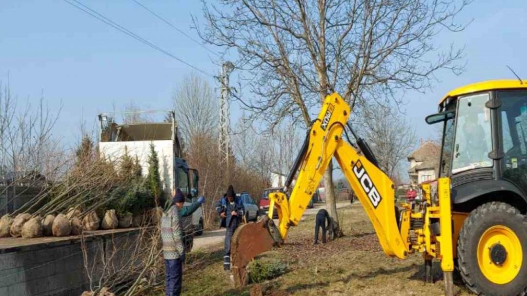 """16 нерегламентирани сметища са почистили служителите на ОП """"Паркстрой - Русе"""" през изминалите два месеца"""