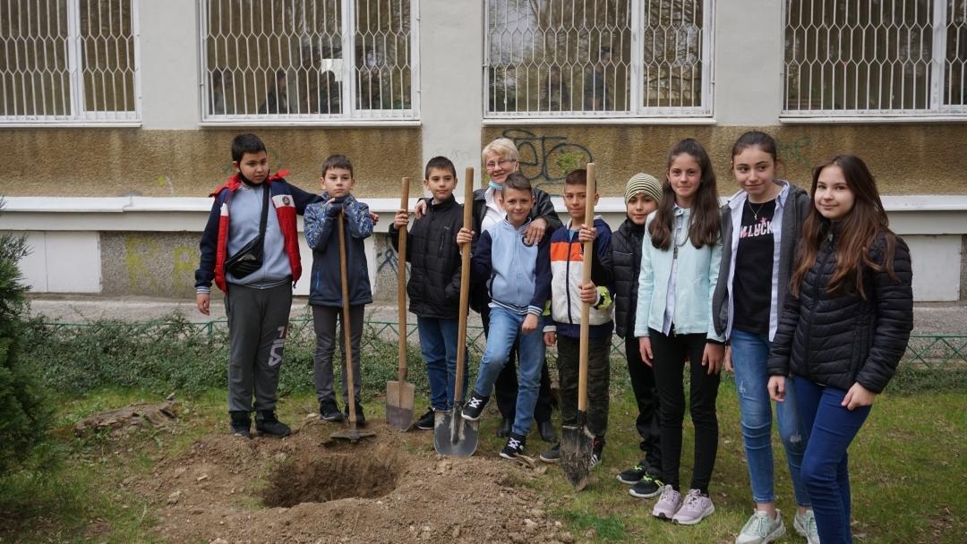 Още 48 дръвчета са засадени днес в русенски училища