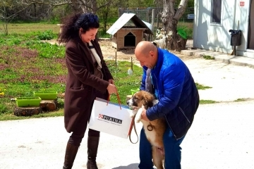 Кампания стимулира осиновяването на животни от Общинския приют в Русе