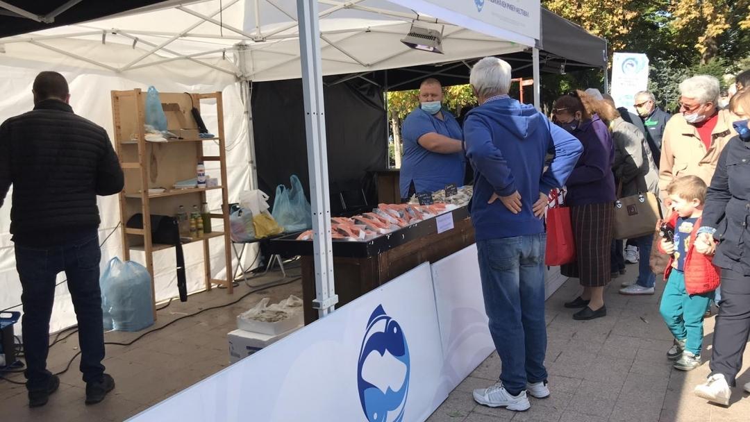 За първи път в Русе се проведе Национален рибен фестивал