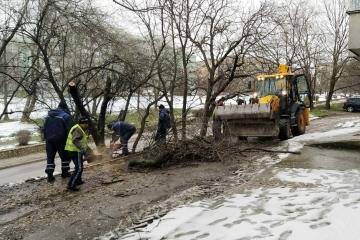 """След тежките валежи продължава активната дейност на ОП """"Паркстрой"""""""